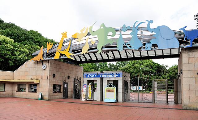 千葉 市 動物 公園