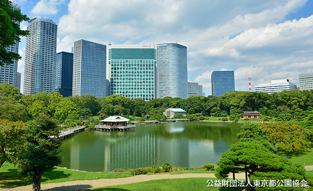 Access|Mitsui Garden Hotel Ginza Premier