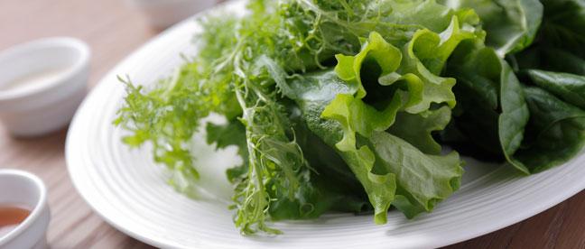 千葉大学を拠点に実証・研修された工場野菜の提供